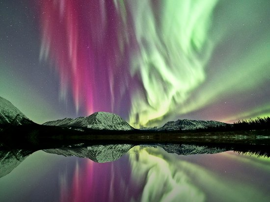 Aurora viewing in the Yukon is something you'll never forget
