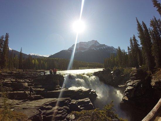 HI Athabasca Falls Wilderness Hostel : photo2.jpg