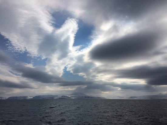 Polar Charter: photo0.jpg