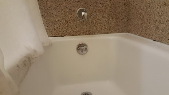 Holiday Inn Express Leland-Wilmington Area: mold on caulking and shower curtain