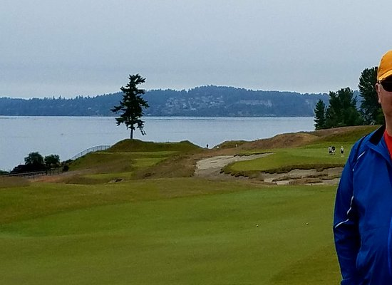 University Place, WA: iconic Chambers Bay tree with Fox and McNeil Islands behind
