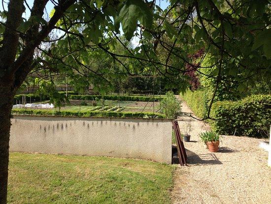 Berry Bouy, Francia: Le parc : le potager