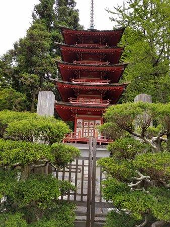 Golden Gate National Recreation Area: Japanese Tea Garden