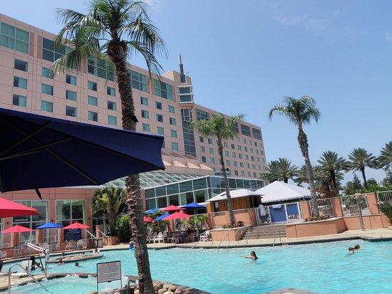 Moody Gardens Hotel Spa & Convention Center: Hotel pool