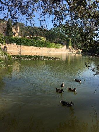 Castell Jalpi: photo8.jpg
