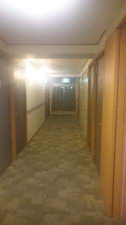 Toyoko Inn Osaka Umeda Higashi : 廊下です、扉の遮音がチョット