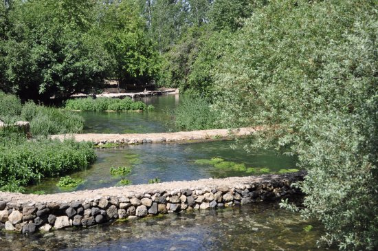 Golan Heights: Hermon River Springs