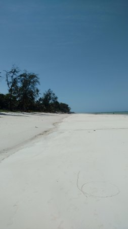 Diani Beach : Beach view