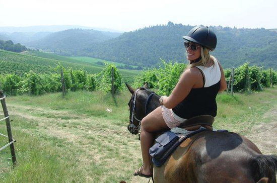 Horse Riding in Chianti Day Trip from...