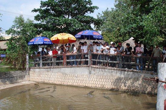 Ben Tre Province, เวียดนาม: Câu CÁ sấu