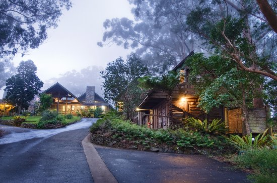 Binna Burra Mountain Lodge