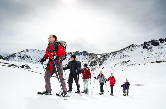 Backcountry Snowshoeing Tour from...
