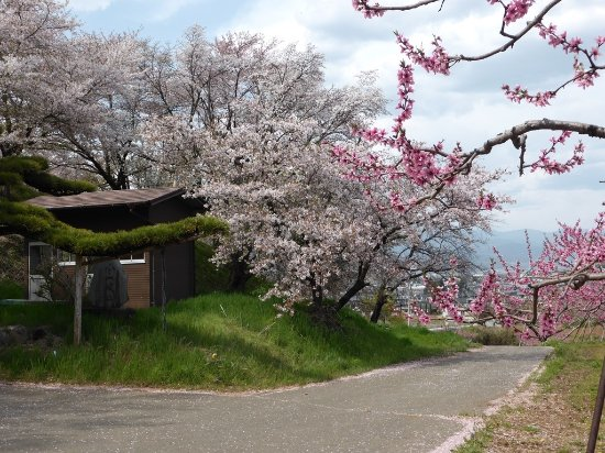 Fuefuki Photo
