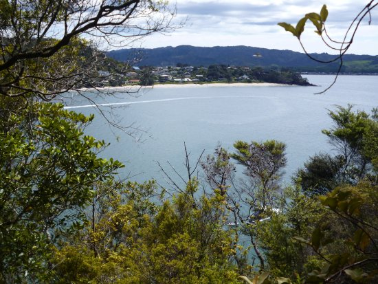 Cooks Beach, Neuseeland: View from the track up the hill from the road over Front Beach