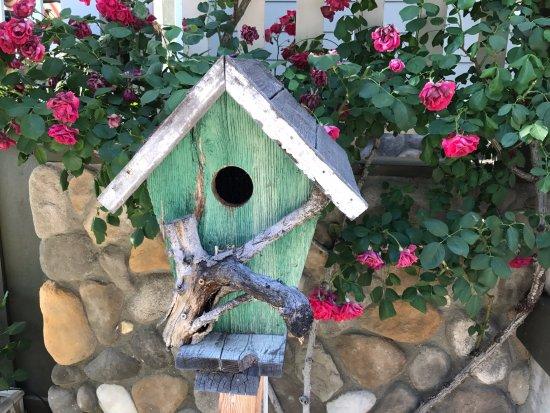 Santa Ynez, CA: Critter Confines