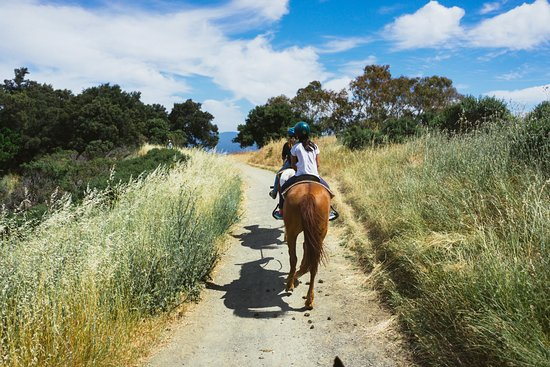 Garrod Farms Riding Stables: On the trail.