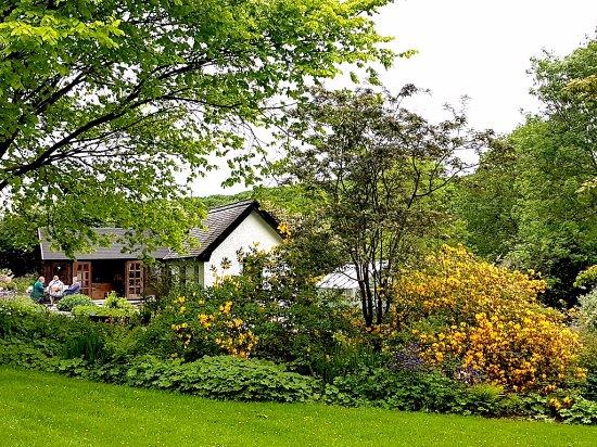 Cribyn, UK: Beautiful gardens