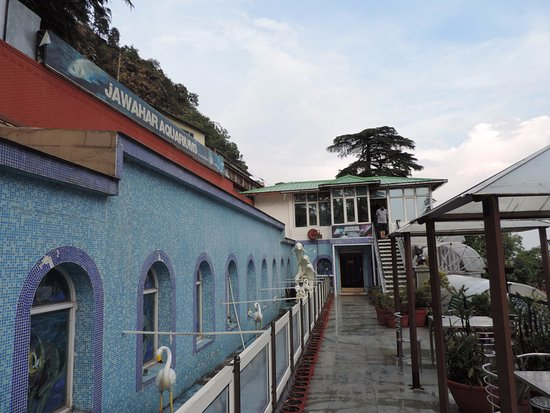 Mussoorie, India: Jawahar aquarium