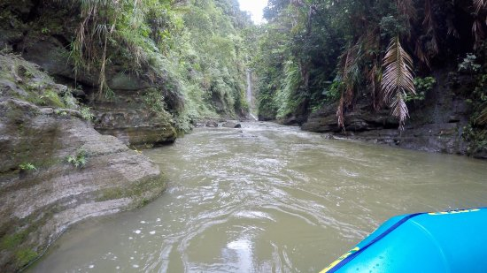 Rivers Fiji - Day Adventures: view