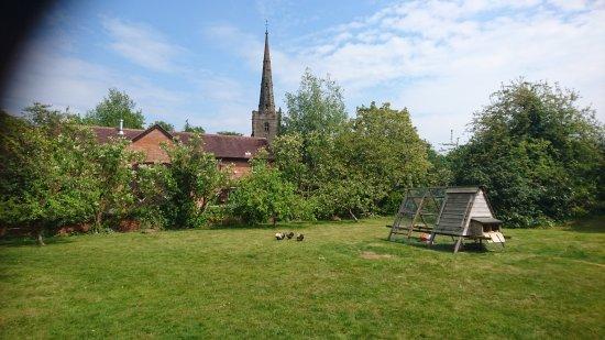 Bickenhill, UK: Garden