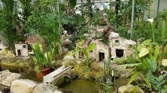 Oasi Natura Mocrei Ecosezione