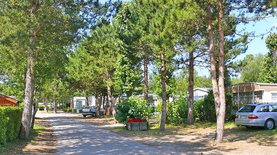 Rang-du-Fliers ภาพถ่าย