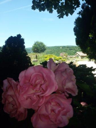Simiane-la-Rotonde 사진