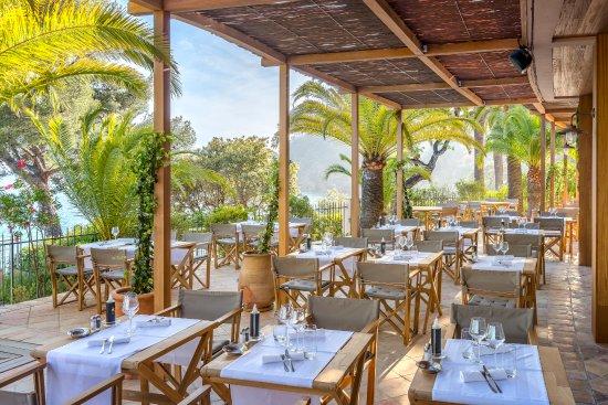 Restaurant Le Loup De Mer Le Bailli De Suffren