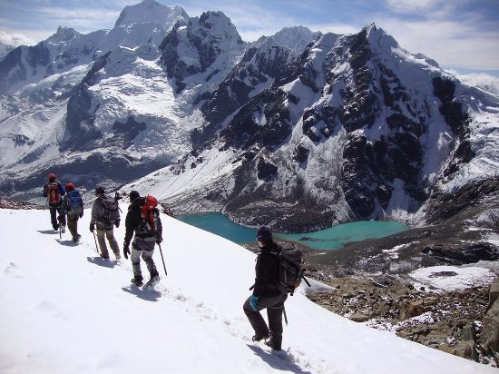 Pacha Andean Walkers