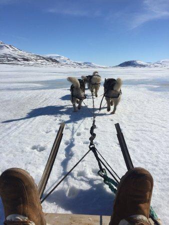Longyearbyen, Noruega: Ein unvergessliches Erlebnis