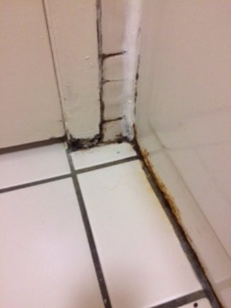 Clarion Inn & Suites At International Drive: Rusted, falling apart tub