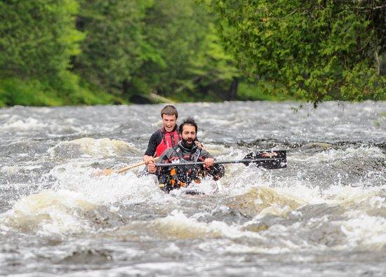 Kedgwick River, แคนาดา: Petit rapide