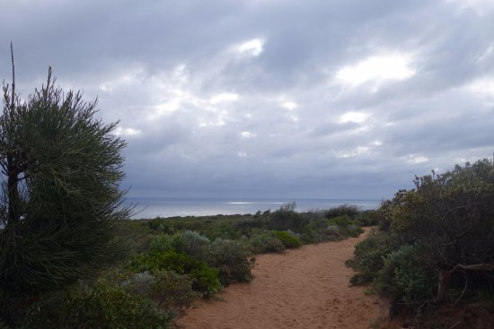 Cape Naturaliste, Australia: Trail to the whale watching spot