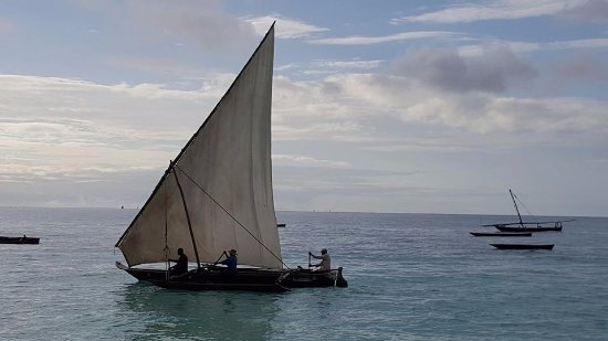 DoubleTree by Hilton Resort Zanzibar - Nungwi: Dhow sailing past the Double Tree Hilton
