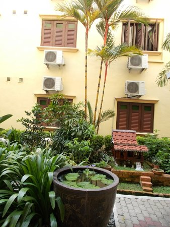 Hotel Puri: The little garden at the back