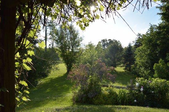 Sussex, Canada: Rear Gardens