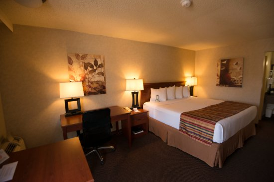 Clarksville, AR: You will enjoy the comforts of this King size room with work desk.