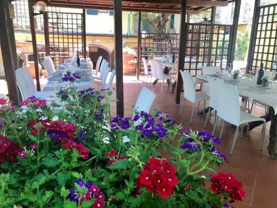 Montespertoli, İtalya: Il giardino.