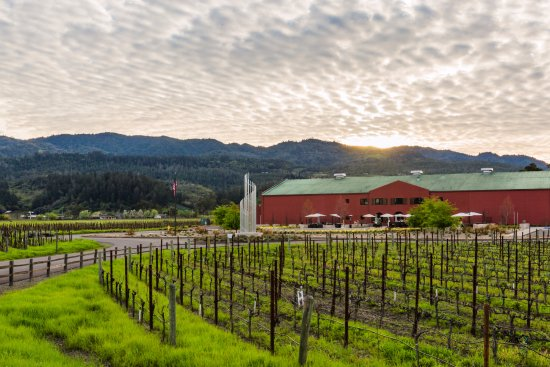 Rutherford, CA: Provenance Vineyards Winery and Estate Vineyard