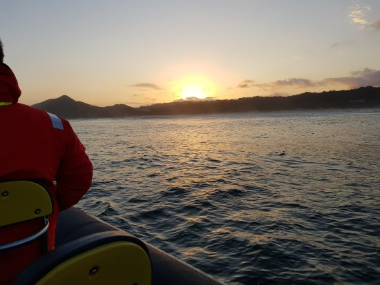 Knysna RIB Adventures: 20170531_171108_large.jpg