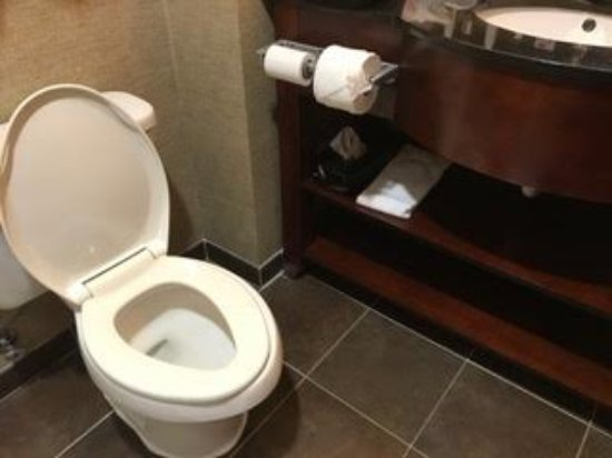 Holiday Inn Southaven - Central: Major height difference in toilet and countertop