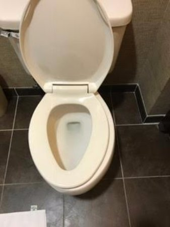 Holiday Inn Southaven - Central: Unhinged toilet seat