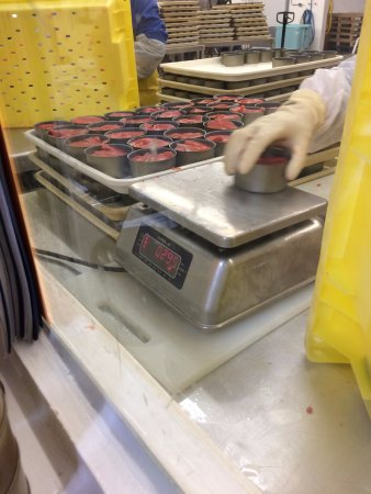 Nanaimo, Canada: Weighing and canning fresh salmon