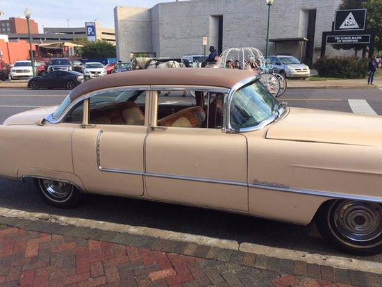 Cadillac Of Memphis >> American Dream Safari Tad S 1955 Cadillac Picture Of