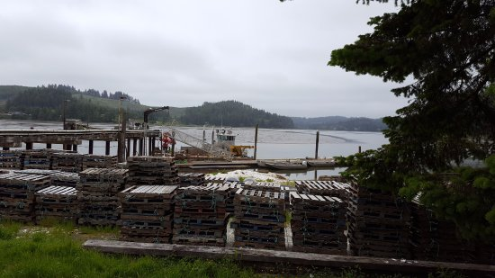 North Bend, OR: oyster farm