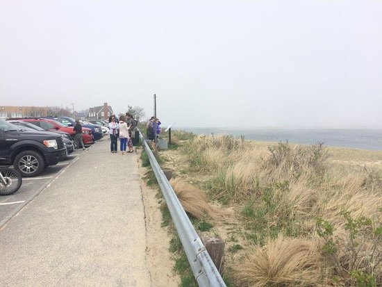Chatham Lighthouse : Looking up the beach from the parking lot