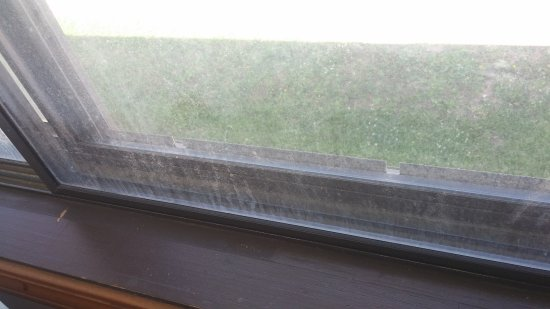 Harrisonville, MO: Filthy windows no screens