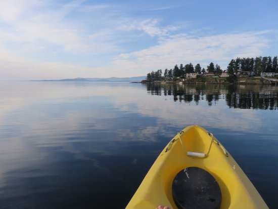 Nanoose Bay, Canada: Kayak in the bay by the resort