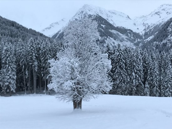Hollersbach im Pinzgau, Áustria: photo0.jpg