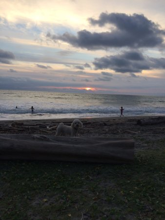 Cocosolo Lodge: Beautiful sunset by the beach